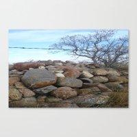 Tree and Rocks Canvas Print