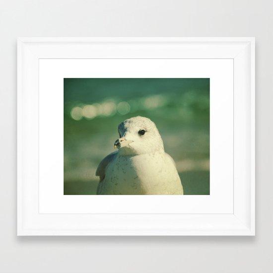 Seagull Close Up Framed Art Print