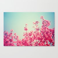 Pink Flowers In The Sky Canvas Print