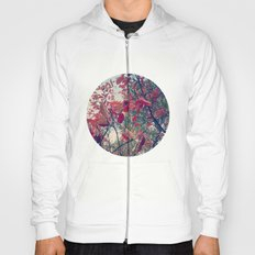 Colours of nature Hoody