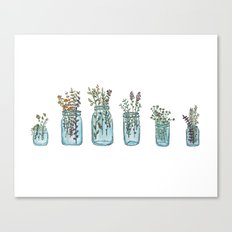 Mason Jars Canvas Print