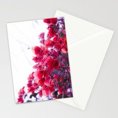 Touch of Love Stationery Cards