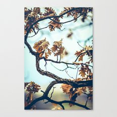 Autumn Branches Canvas Print