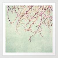 Chinese Spring Art Print