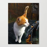 Fall Familiar Canvas Print