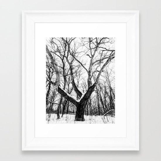 entanglement Framed Art Print