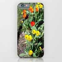 iPhone & iPod Case featuring Tulip Garden ~ spring flowers for u by helene smith photography