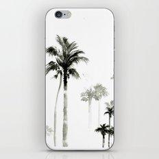 Shadow palms iPhone & iPod Skin