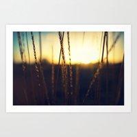 Prairie Sun Art Print