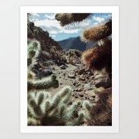 Cholla Frame Art Print