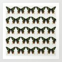 Madagascan Sunset Moths Art Print