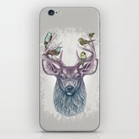 Magic Buck iPhone & iPod Skin
