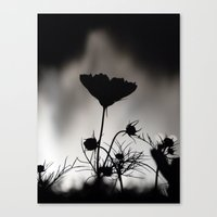 Flower In Black And Whit… Canvas Print