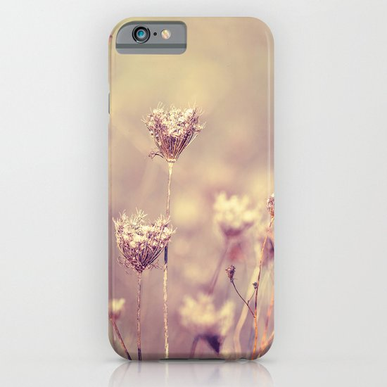 Winter Queen Anne's Lace  iPhone & iPod Case