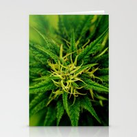 Marijuana Stationery Cards