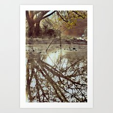 Morning shadows Art Print
