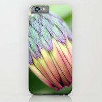 iPhone & iPod Case featuring Sweet Baby Daisy by Hilary Walker