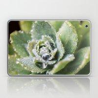 Dew Drop Petals Laptop & iPad Skin