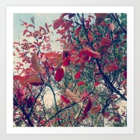 Colours of nature Art Print