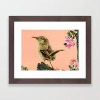 Brown Birdy Framed Art Print