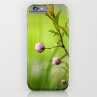 iPhone & iPod Case featuring Bud by Katie Kirkland Photography
