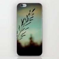 Simple. iPhone & iPod Skin
