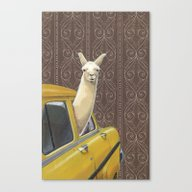 Canvas Print featuring Taxi Llama by Jason Ratliff