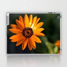 Vibrant Orange Flower Laptop & iPad Skin