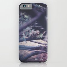 Squirrel Slim Case iPhone 6s