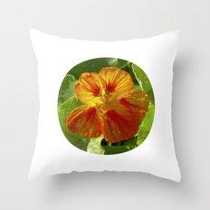 nasturtium bloom XI Throw Pillow