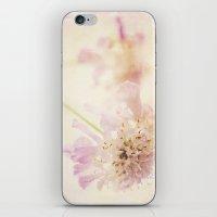 Soft Pink iPhone & iPod Skin