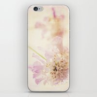 Soft Pink iPhone & iPod Skin