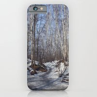 iPhone & iPod Case featuring birch forest by bearandvodka