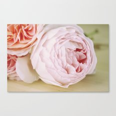 Early Roses Canvas Print