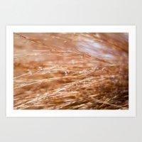 Fire Grass Art Print