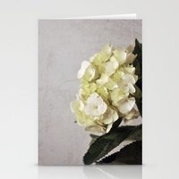 Baby Hydrangeas and Grey Stationery Cards