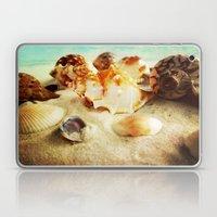 Shell Laptop & iPad Skin