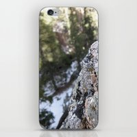 Crystalline Moss iPhone & iPod Skin