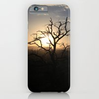 Skimpy Tree Glows iPhone 6 Slim Case