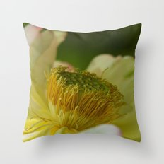 It all revolves around Throw Pillow
