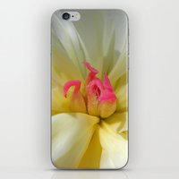 peony bloom II iPhone & iPod Skin