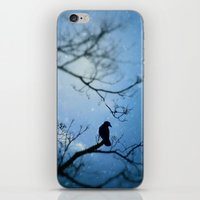 Silent Snow iPhone & iPod Skin