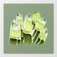 emerald city. Canvas Print