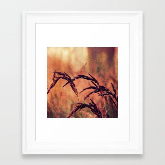 summerlight Framed Art Print