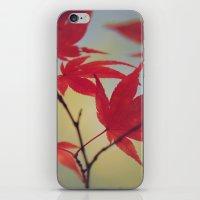 Dusky Fall iPhone & iPod Skin