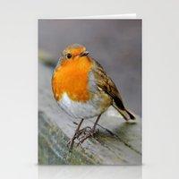 Cheeky Robin  Stationery Cards