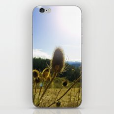 Colorful Winter Day iPhone & iPod Skin