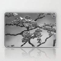 Jason's Dogwood Laptop & iPad Skin