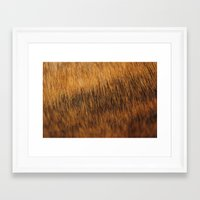 Brindle Fur Framed Art Print