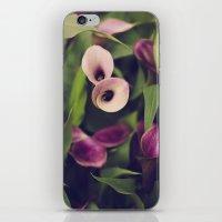 Purple Callas iPhone & iPod Skin